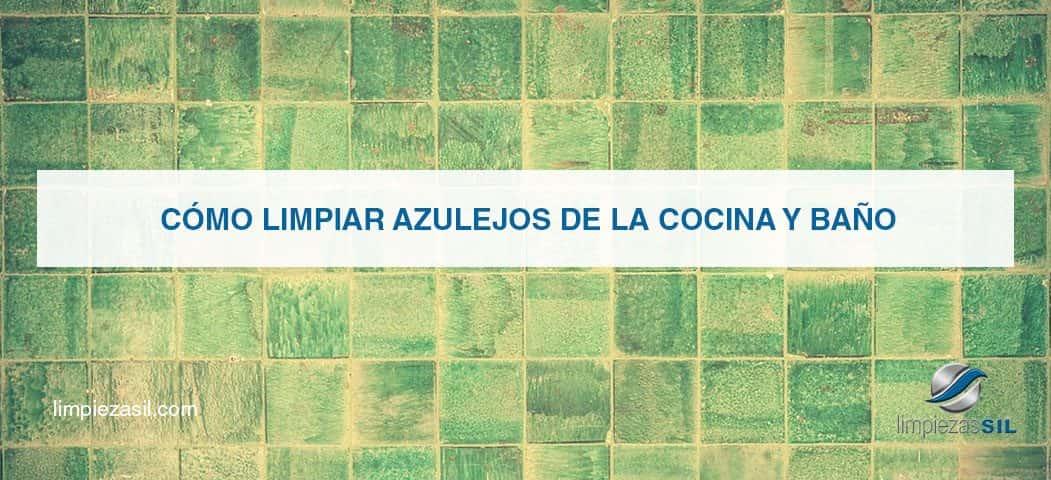 C mo limpiar azulejos de la cocina y ba o limpiezas sil - Como limpiar bien el bano ...