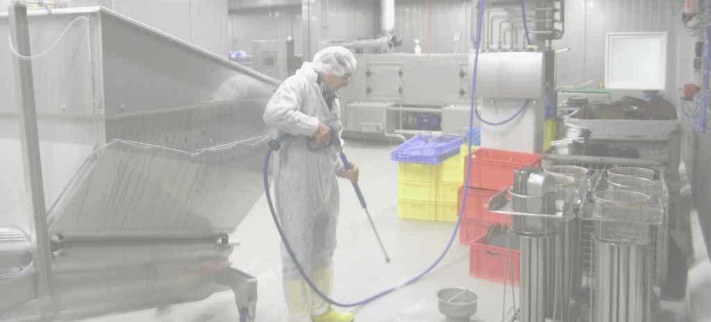 Gu a de limpieza para industria alimentaria en espa a for Manual de limpieza y desinfeccion en industria alimentaria