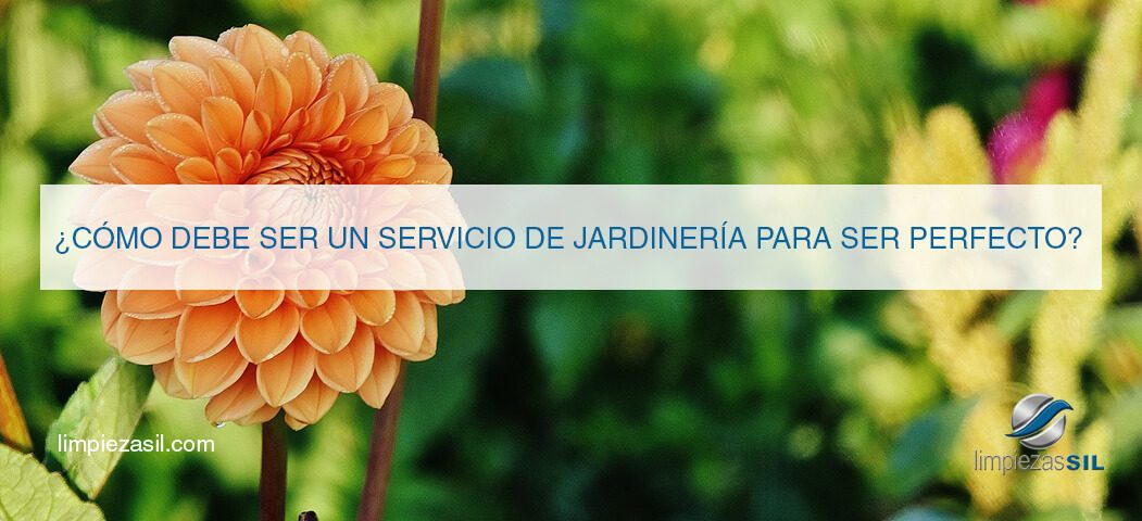 servicio de jardinera