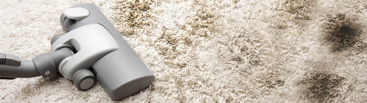 limpieza-de-alfombras-y-moquetas