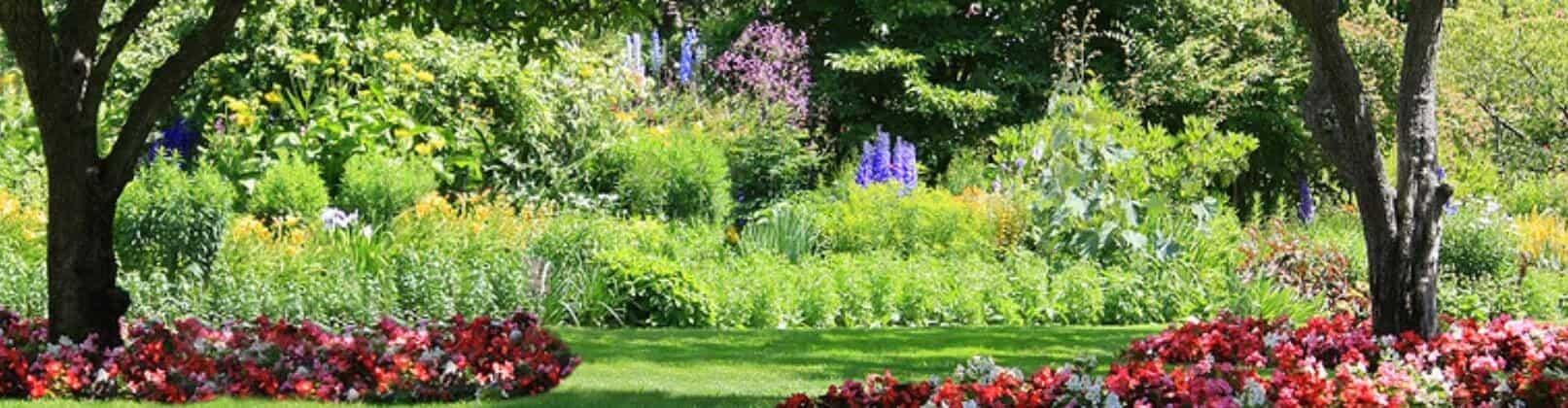 C mo debe ser un servicio de jardiner a para ser perfecto - Jardines sin mantenimiento ...