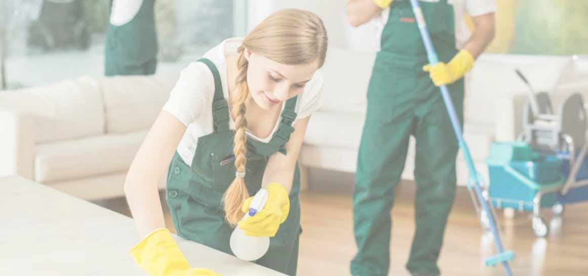 Limpieza para hogar los mejores consejos de expertos - Los mejores ambientadores para el hogar ...