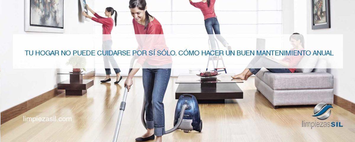 mantenimiento y limpieza anual