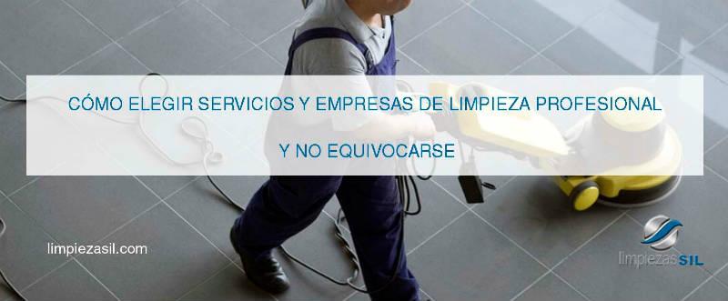 limpieza profesional