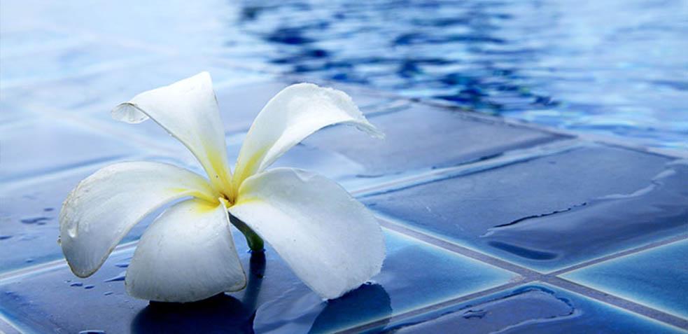 correcto-mantenimiento-de-tu-piscina