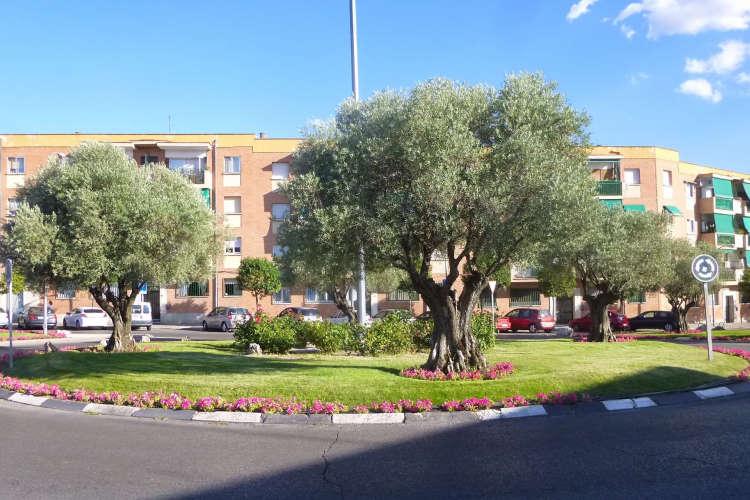 urbanismo-en-Colmenar-Viejo